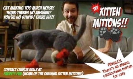 kitten-mittons
